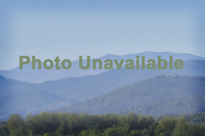 Lot 42 on Sweetbriar Rd S, Lake Lure, NC