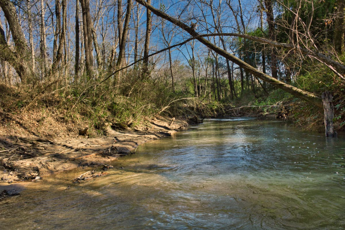 Lot 137 is 5+ acres in Union Mills, NC